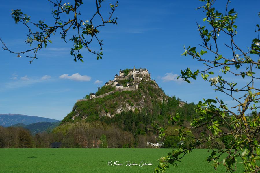 Preise / Öffnungszeiten - Burg Hochosterwitz