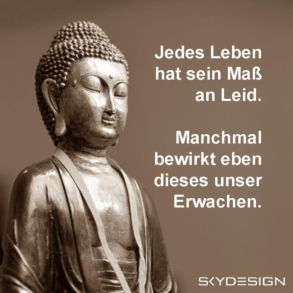 Jedes Leben hat sein Maß an Leid Manchmal bewirkt eben dieses unser Erwachen Buddha Zitate - Die beliebtesten 20 Buddha Zitate & Sprüche