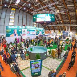 AZ7V8156 250x250 - Häuslbauermesse Klagenfurt zählte 24.000 Besucher