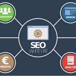 So lernst du Suchmaschinenoptimierung und Content Marketing im Handumdrehen!